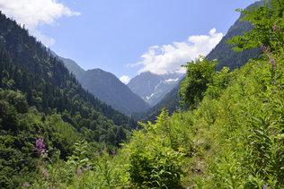 По дороге в Абхазию