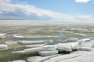 Льды обского моря