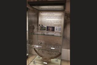 Памятники верхнего палеолита