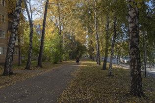 Осенний тёплый денёк в Новосибирске