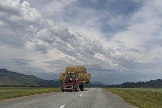 Дорожный пейзаж Уймонской долины