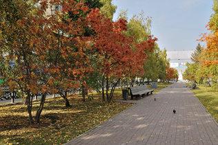 Осень на Красном Проспекте в Новосибирске