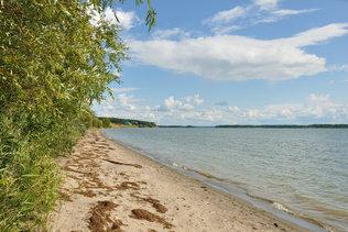 Песчанный берег Обского моря