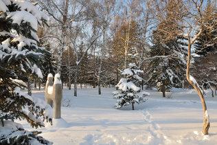 Зима в Первомайском сквере