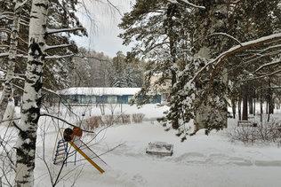 Отдых в зимнем лесу