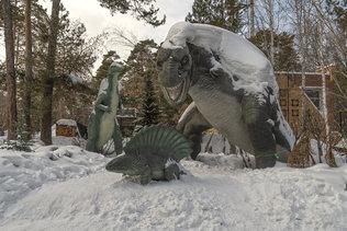 Зима в новосибирском зоопарке