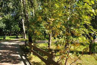Уже осень