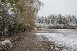 Почти зима в Новосибирске
