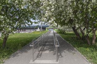 Новосибирск цветущий