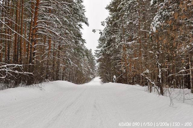Дорога Деда Мороза