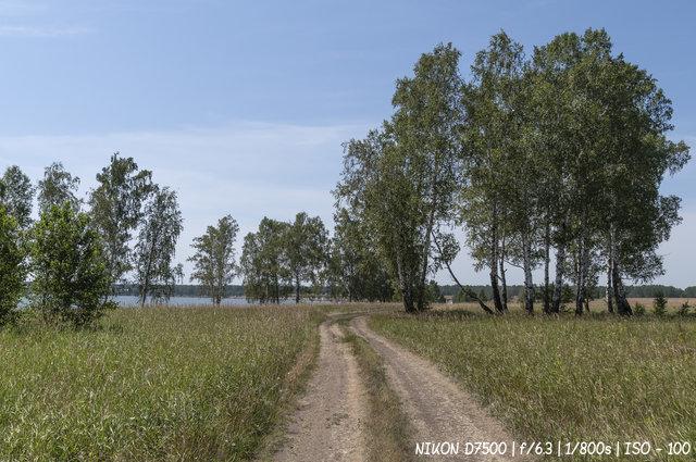 Дорога по берегу обского водохранилища