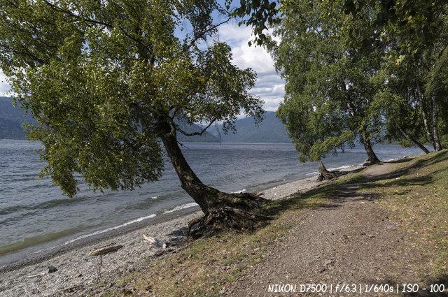 На озере Телецком в Горном Алтае