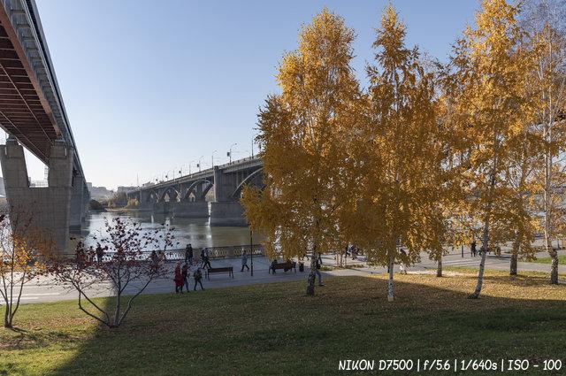 Золотая осень на набережной Новосибирска