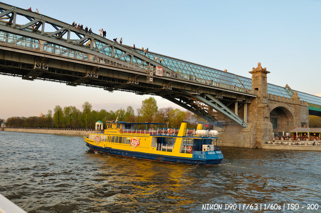 Пушкинский мост в Парке Горького