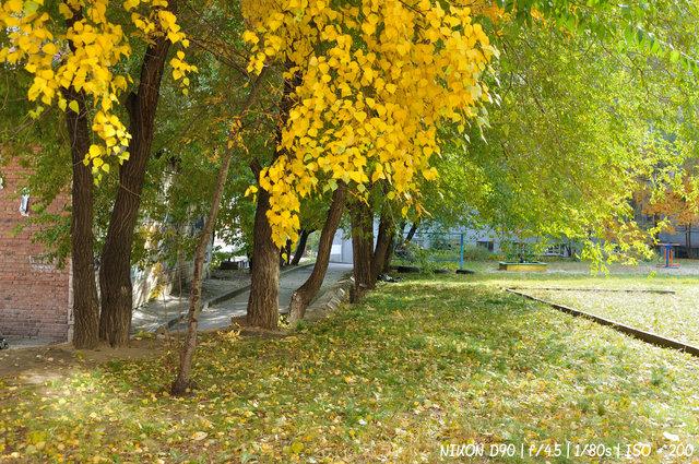 Осень на дворе