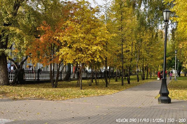 Осень в Первомайском сквере