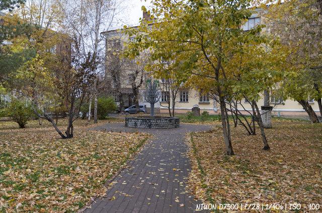 Листья облетели
