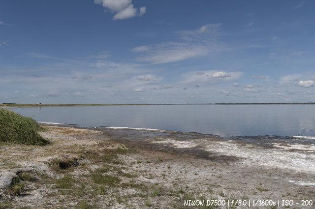 Солёный берег озера Мормышанского