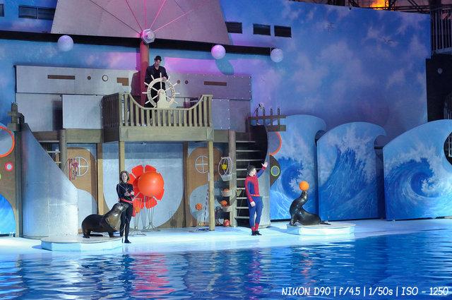 Цирковое представление с морскими животными