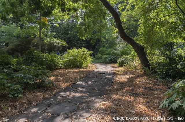 Приближение осени в Никитском ботаническом саду в Ялте
